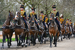 © Licensed to London News Pictures. 06/02/2013. London, UK The troop leaves after the salute. The King's Troop Royal Horse Artillery, wearing immaculately presented full dress uniform, provide a colourful spectacle as they ride past Buckingham Palace today, 6th February 2013, to Green Park to stage a 41 Gun Royal Salute marking the 61st Anniversary of the Accession of Her Majesty The Queen. Photo credit : Stephen Simpson/LNP