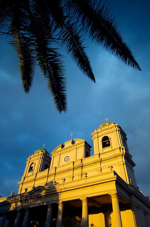 Costa Rica, San Jose, Metroplitan Cathedral, National Cathedral, Central Park, Parque Central, Palm Tree