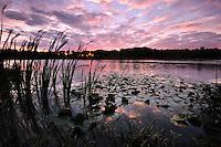 Kilpatrick Lake<br /> Barry County, Michigan