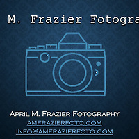 Profile Portfolio