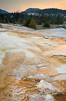 Thermophilic algae and fresh desposits of travertine emanating from Grassy Spring section of Mammoth Hot Springs, Yellowstone National Park