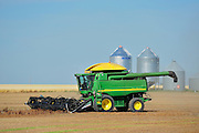 Lentil harvest. Combine and grain bins<br /> Land<br /> Saskatchewan<br /> Canada