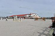 2014-04-azelhof