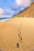 Footprint, Kalalau Beach, Napali Coast, Kauai, Hawaii