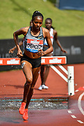 Beatrice Chepkoech (KEN) on her way to winning the women's 3000m steeplechase in a Meeting Best time of 9.05.55 during the Birmingham Grand Prix, Sunday, Aug 18, 2019, in Birmingham, United Kingdom. (Steve Flynn/Image of Sport via AP)