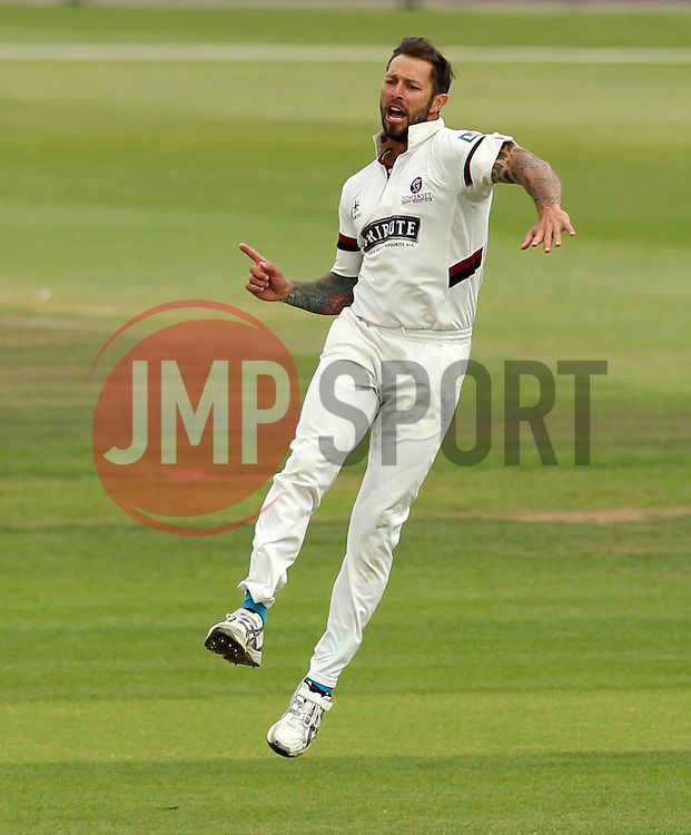 Somerset's Peter Trego celebrates taking the wicket of Hampshire's Michael Carberry - Photo mandatory by-line: Robbie Stephenson/JMP - Mobile: 07966 386802 - 23/06/2015 - SPORT - Cricket - Southampton - The Ageas Bowl - Hampshire v Somerset - County Championship Division One