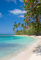 Paradisiacal tropical beach scene