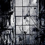 Window of Old Power House- Near the Sugar Cane Train stop. Lahiana, HI