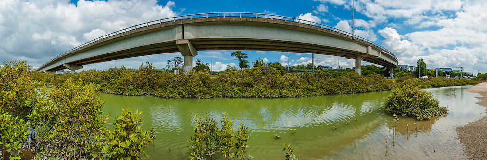 The end of Rosebank road that towers over the mangroves at.  Pollen Island. Auckland