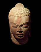 Head of Buddha. Gupta dynasty (320-600 A.D). Sandstone carving from northern India, Mathura (city) Uttar Pradesh