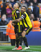 Football - 2018 / 2019 Emirates FA Cup - Semi-Final: Wolverhampton Wanderers vs. Watford<br /> <br /> Gerard Deulofeu celebrates his extra time goal with Troy Deeney, at Wembley Stadium.<br /> <br /> COLORSPORT/ANDREW COWIE