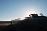 Hiker in misty meadow at sunrise, El Dorado County, California