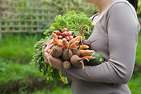 Woman holding vegetables in garden mid section side view
