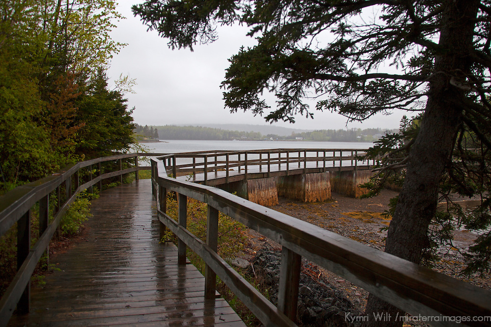 North America, Canada, Nova Scotia, Guysborough. Boylston Provinicial Park trail.