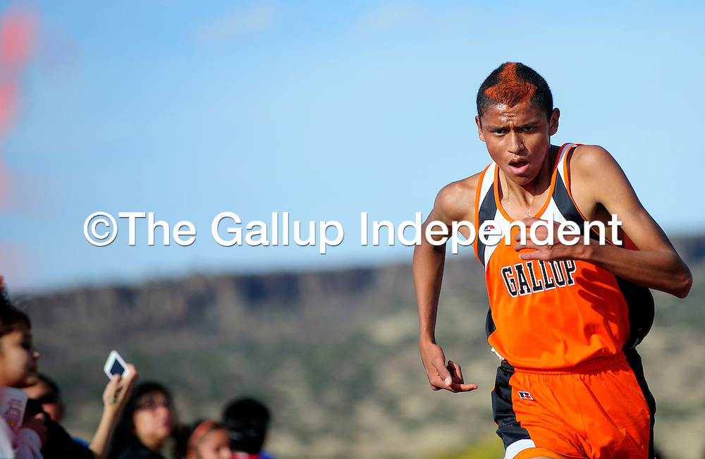 110212  Adron Gardner<br /> <br /> Gallup Bengal Alex Taylor pushes to the finish line for the boys race in second place in Grants Friday.