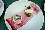 Fresh berry dessert, IPNC 2010