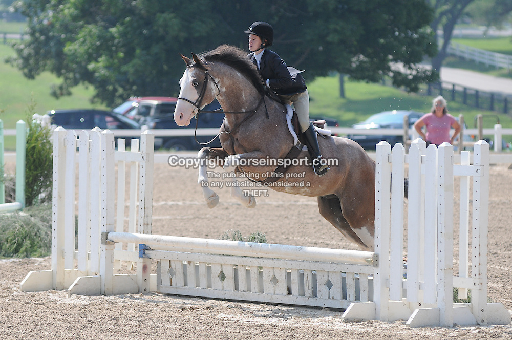 Robert Murphy show stables 2011