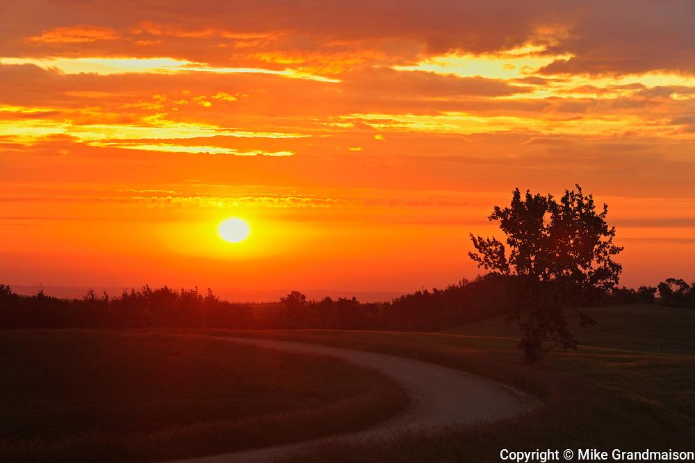 Country road at sunrise<br /> Baljennie<br /> Saskatchewan<br /> Canada