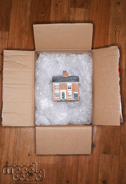 New Home in Moving Box