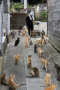 Aoshima, Ehime prefecture, September 4 2015 - Naoko KAMIMOTO is the local person in charge of the cats on the island.<br /> Aoshima (Ao island) is one of the several « cat islands » in Japan. Due to the decreasing of its poluation, the island now host about 6 times more cats than residents.