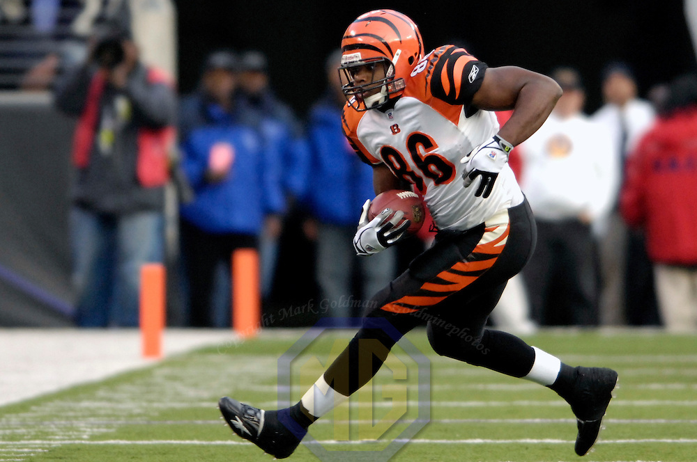 11 November 2007:  Cincinnati Bengals tight end Daniel Coats (86) catches a pass for a 6-yard gain against the Baltimore Ravens in the 1st quarter on November 11, 2007 at M&T Bank Stadium in Baltimore, Maryland. The Bengals defeated the Ravens 21-7 on the strength of 7 field goals..