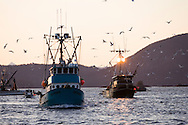 A commercial fishing seiner, F/V Owyhee, pulls away from a tender just as the sun is setting during the Sitka Sound herring sac roe fishery.