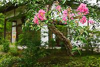 Japan Himeji Himeji Koko-en Gardens