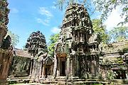 Ta Prohm, Angkor, Cambodia