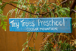 United States, Washington, Bellevue, Cougar Mountain Regional Wildland Park, Tiny Trees Preschool