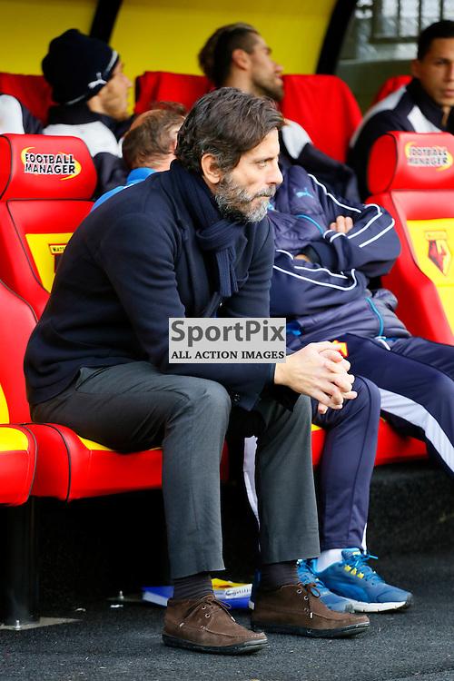 Quique Sanchez Flores during Watford v Tottenham, Barclays Premier League, Monday 28th December 2015, Vicarage Road, Watford