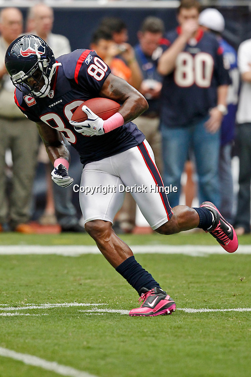 October 10, 2010; Houston, TX USA; Houston Texans wide receiver Andre Johnson (80) during warm ups prior to kickoff of a game against the New York Giants at Reliant Stadium. The Giants defeated the Texans 34-10. Mandatory Credit: Derick E. Hingle