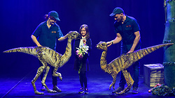 © Licensed to London News Pictures. 13/02/2020. LONDON, UK. A pupil from Stockwell Primary School meets a pair of Leeallanasaurs from Erth's Dinosaur Zoo, one of the acts forming part of Imagine Children's Festival at Southbank Centre for half term 12 to 23 February 2020. (Permission to photograph obtained from schools teacher).  Photo credit: Stephen Chung/LNP