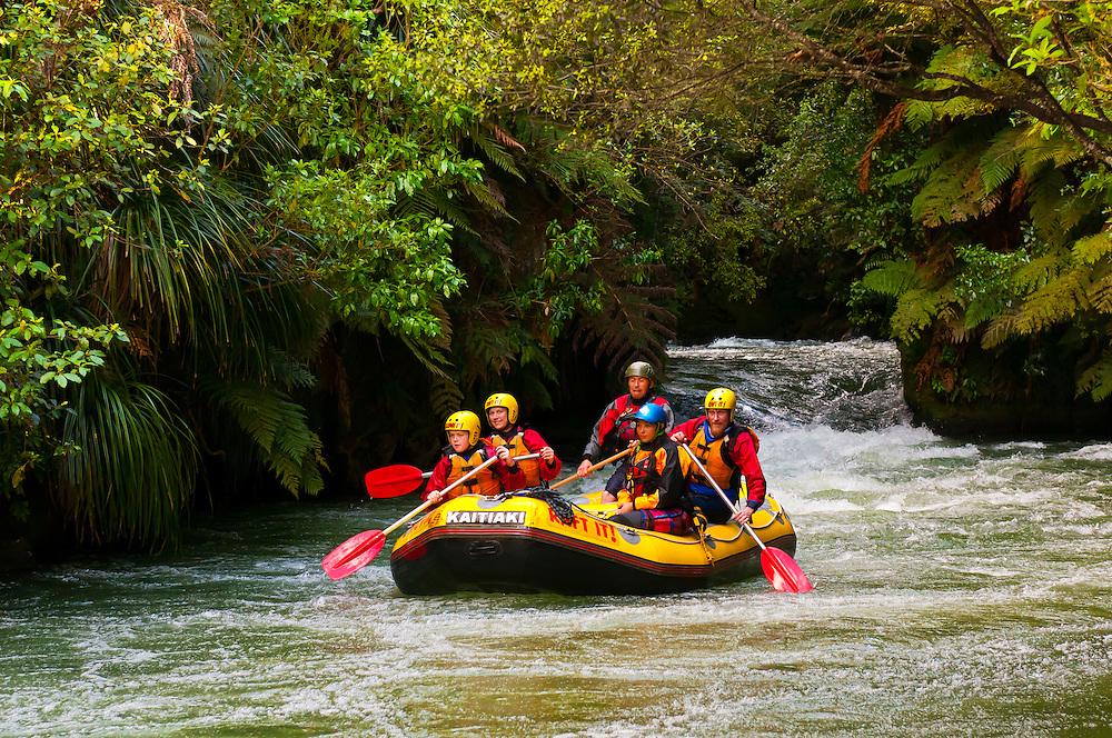 Rafting the Kaituna River (Kaitiaki Adventures) near Rotorua, north island, New Zealand