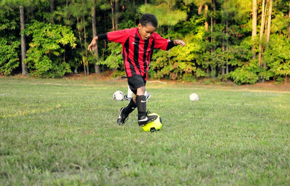 Tiger Soccer Club Fall 2014<br /> &copy;Jaime Grant/JGRANTPHOTO