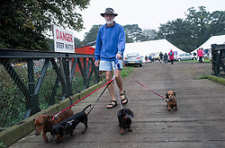 © Licensed to London News Pictures. <br /> 20/09/2014. <br /> <br /> Stokesley, England<br /> <br /> A man walks his dogs over a small footbridge during the start of the Stokesley Agricultural Show in North Yorkshire, England. The show which dates back to 1859 is the largest one day agricultural show in the north of England.<br /> <br /> Photo credit : Ian Forsyth/LNP