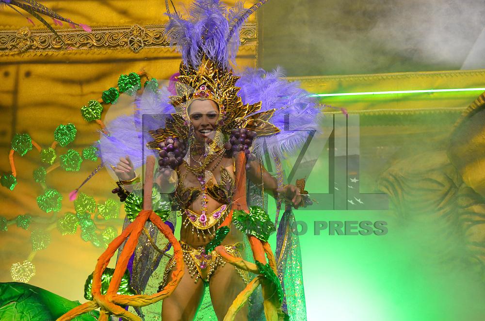SAO PAULO, SP, 09 FEVEREIRO 2013 - CARNAVAL SP - VAI-VAI - Integrantes da escola de samba Vai Vai durante desfile no primeiro dia do Grupo Especial no Sambódromo do Anhembi na região norte da capital paulista, na madrugada deste sábado, 09. (FOTO: LEVI BIANCO - BRAZIL PHOTO PRESS).