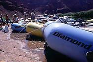 Diamond River Adventure boats line the water at Lee's Ferry.  The drop in for the colorado river rafting trips through the grand canyon