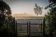 Vid grinden, soluppgång med morgondimma