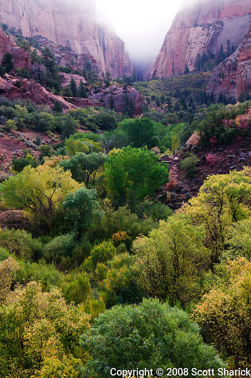 The Kolob Canyon section of Zion National Park in Utah. Missoula Photographer