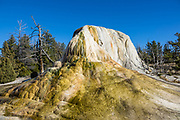 Orange Spring Mound, Upper Terrace Drive, Mammoth Hot Springs. Yellowstone National Park, Wyoming, USA.