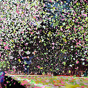 WASHINGTON, DC - July 9th, 2012 - Chris Martin of Coldplay performs as confetti cannons spray at the Verizon Center in Washington, D.C. The band's 2011 album, Mylo Xyloto, reached number one in thirty countries. (Photo by Kyle Gustafson/For The Washington Post)
