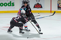 KELOWNA, CANADA - NOVEMBER 11:  Jack Cowell #8 of the Kelowna Rockets is checked between Chris Douglas #12 and Ethan Sakowich #6 of the Red Deer Rebels on November 11, 2017 at Prospera Place in Kelowna, British Columbia, Canada.  (Photo by Marissa Baecker/Shoot the Breeze)  *** Local Caption ***