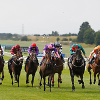 Newmarket 7th August