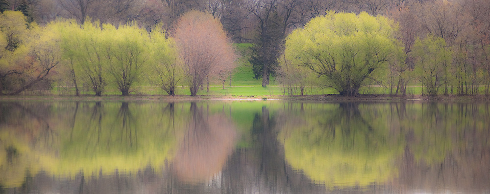 Tree landscape with reflections on a calm spring day