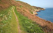 Footpath looking north Island of Herm, Channel Islands, Great Britain