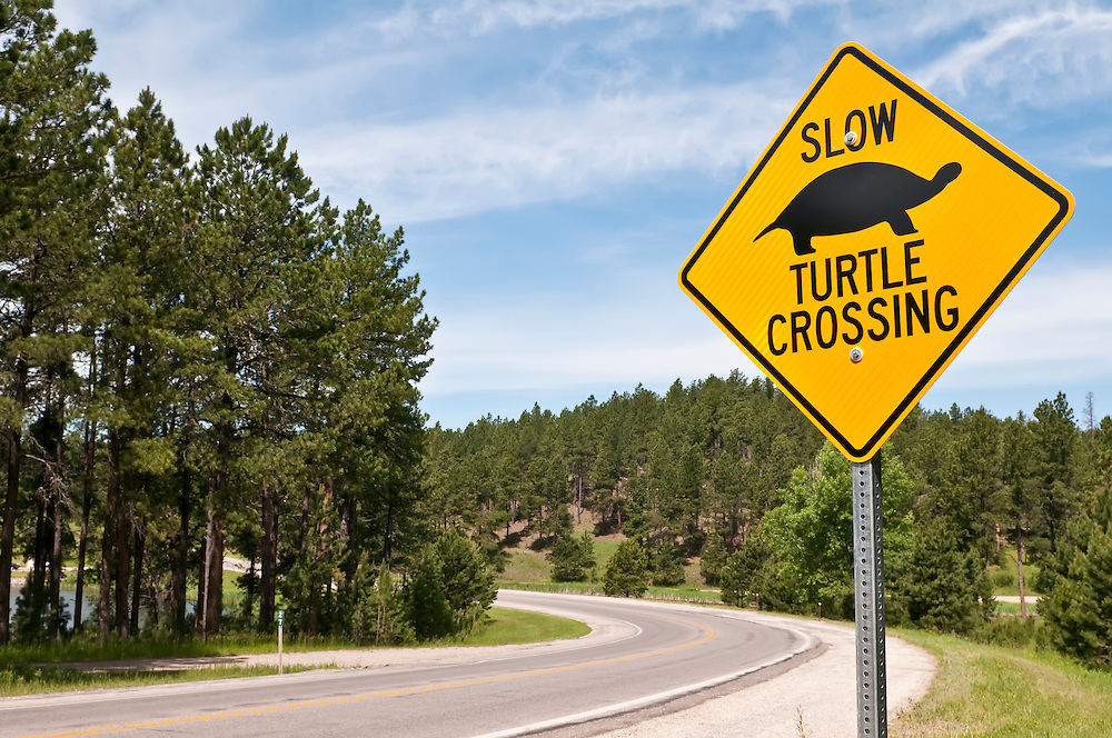 Turtle crossing sign at Stockade Lake,  Custer State Park, South Dakota, USA