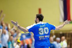 Dragan Gajic #30 of Slovenia celebrates during handball match between National teams of Slovenia and Hungary in play off of 2015 Men's World Championship Qualifications on June 15, 2014 in Rdeca dvorana, Velenje, Slovenia. Photo by Urban Urbanc / Sportida