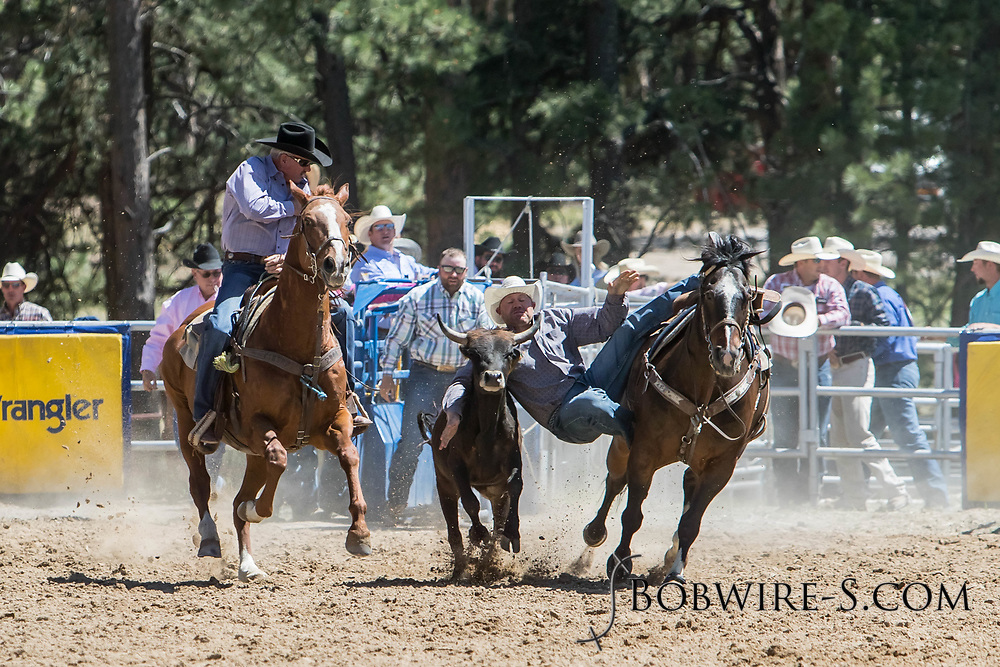 Steer wrestler Wyatt Johnson makes his run in the first performance of the Elizabeth Stampede on Saturday, June 2, 2018.