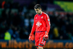 Lukasz Fabianski of Swansea City looks dejected after Stoke City win the match 0-1 - Mandatory byline: Rogan Thomson/JMP - 07966 386802 - 19/10/2015 - FOOTBALL - Liberty Stadium - Swansea, Wales - Swansea City v Stoke City - Barclays Premier League.
