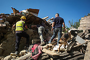 A Civil Protection member and his dog have just found the traces of a dead women in a demolished house in Saletta. A 6,4 earthquake has hit central Italy during the night between the 23 and 24 August killing more than 100. The town of Amatrice is been heavily damaged.